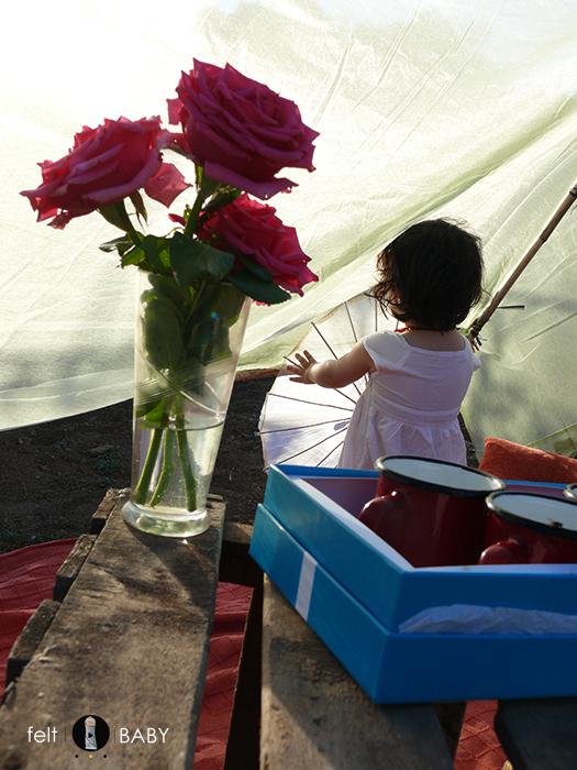 Picnic huerto flores y tazas
