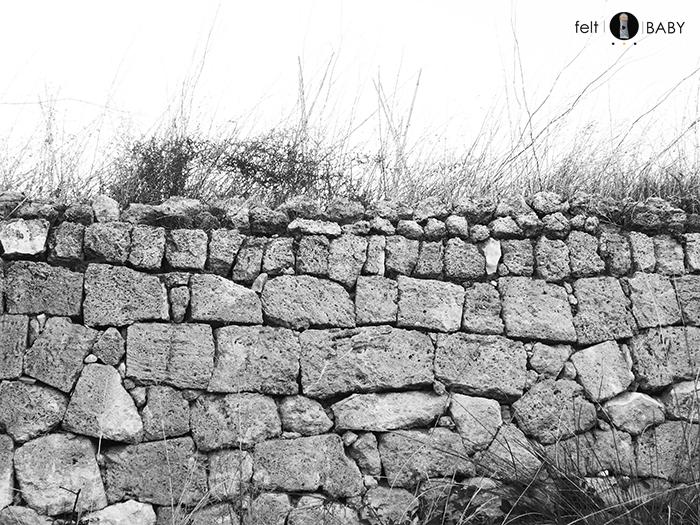 Picnic huerto muro piedra