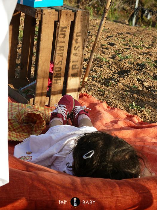 Picnic huerto siesta