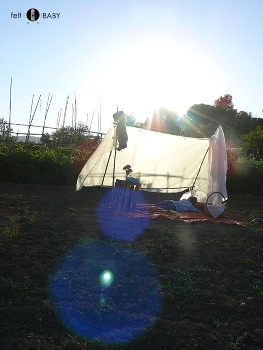 Picnic huerto siestear