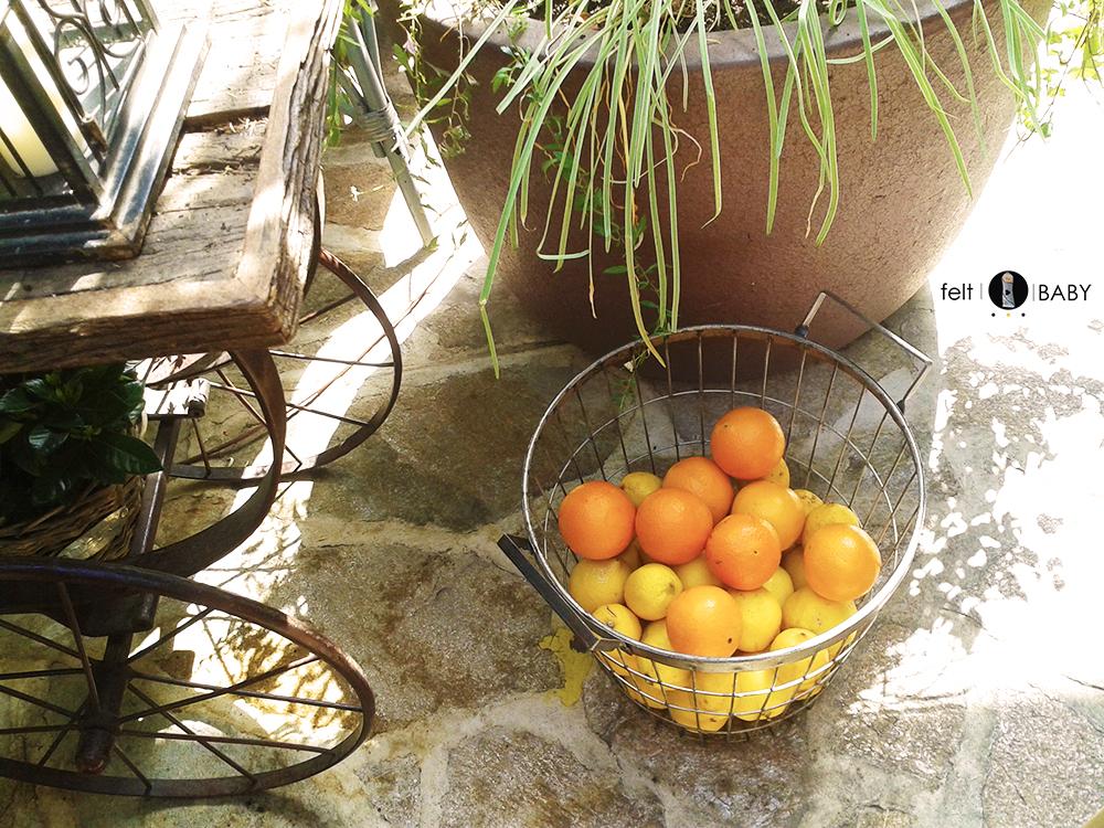 Cesto de cítricos en terraza de té